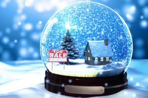 snow-globe-house