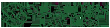 Shaheen Law Firm Logo